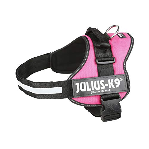 Julius-K9 Powerharness, 1, Dark Pink
