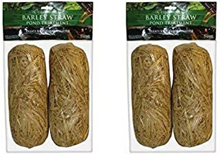 Summit 130 Clear-Water Barley Straw Bales DmsqWj, 4 Bales