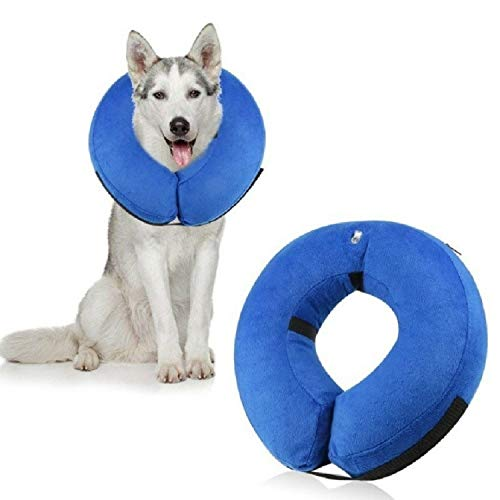 WJH Collar for Perro Inflable preparación Animal