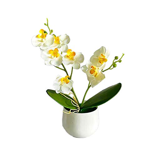 Artificial Flowers,Fake Plants Faux Plastic Fake Plants Wedding,1 Set Fake Flower Eco-Friendly Easy to Clean Fabric Simulation Potted Plants for Household - White