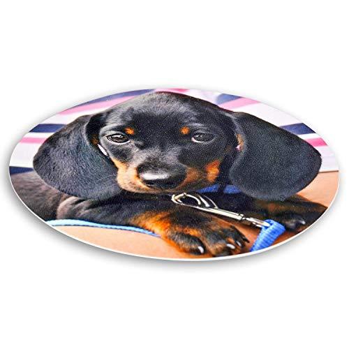 Essbares Foto für Torten, Tortenbild, Tortenaufleger mit eigenem Foto sofort frei gestalten - Beste Qualität (rund, 20cm Durchmesser)