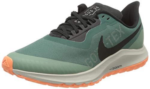 Nike W Zoom Pegasus 36 Trail GTX, Zapatillas de Running Mujer, Bicoastal/Off Noir/Silver Pine, 41 EU