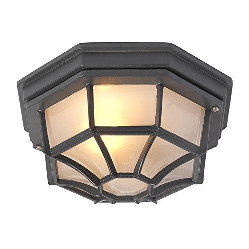 QAZQA Rustique Plafonnier rural gris foncé IP44 - Bri L Aluminium/verre Anthracite Rond E27 Max. 1 x 100 Watt/Extérieur/Jardin/Luminaire/Lumiere/Éclairage