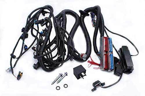 TAKPART Standalone Wiring Harness W/4L60E 4.8 5.3 6.0 fit for 1997-2006 LS1 Engine