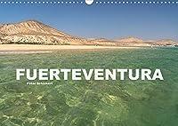 Fuerteventura (Wandkalender 2022 DIN A3 quer): Die Kanareninsel Fuerteventura (Monatskalender, 14 Seiten )