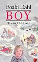 Boy: Tales of Childhood