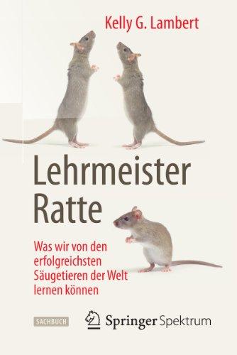 Lehrmeister Ratte: Was wir von den erfolgreichsten Säugetieren der Welt lernen können