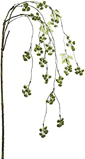 Best irish floral arrangements Reviews
