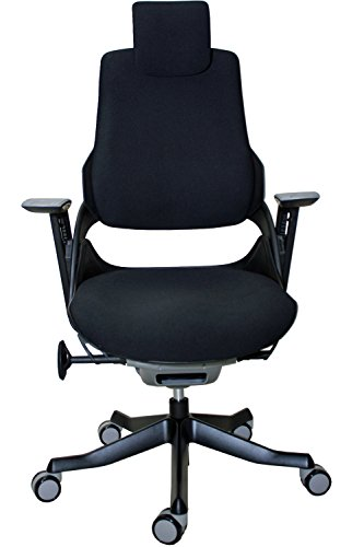 Eurotech Wau series Mesh Office Chair with White frame by Raynor from Office Chairs Outlet.