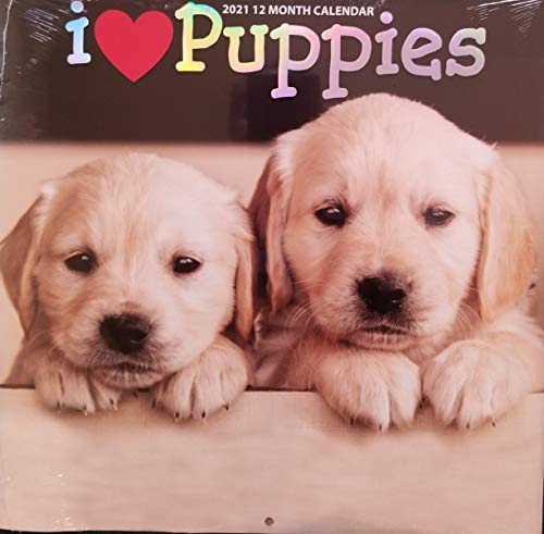 2021 i Love Puppies 12 Month Calendar product image
