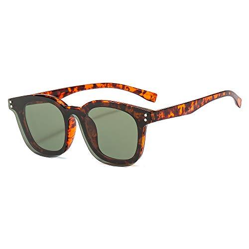 WDTYYJ Klassischer Herren TR90 Sonnenbrillen Flachspiegel mit Magnetclip Ärmel Spiegel Sonnenbrille 2