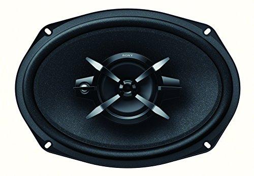 Sony XS-FB6930 16x24 cm 3-Wege Auto-Lautspecher mit 450 Watt Maximalleistung schwarz & Amazon Basics 16-Gauge Speaker Wire - 100 Feet