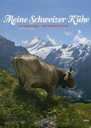 My cows that are swissBENTELI) - 41TGuMJibGL. SL500