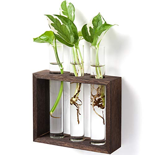 Mkono Wall Hanging Glass Planter Plant Terrarium Modern Flower Bud Vase in Wood Stand Rack Tabletop Terrarium for Propagating Hydropoinc Plants, Home Office Decoration with 3 Test Tube, Small, Brown