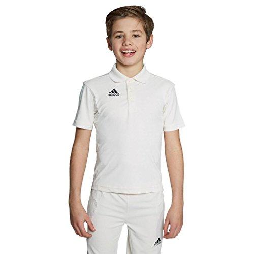 adidas Howzat langärmlig Kinder Cricket weiße Polo Shirt Oberteil Trikot weiß - Weiß, 15-16 Years