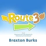 Route 3 (from 'Pokémon: Let's Go, Pikachu!' and 'Pokémon: Let's Go, Eevee!')