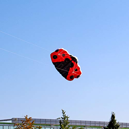 Xisheep Outdoor Toys, Huge Outdoor Fun Sports Two-Line Software L-adybug K-ITE Animal Kites Flying, for Home & Pastime