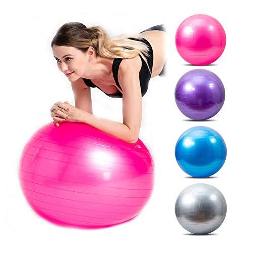 DINGFAN Pelota de Fitness, Pelota Pilates Grande Yoga Fisioterapia Balance Gymball, Embarazadas Gimnasia Herramientas, Antideslizante Prueba de Explosiones Fitness Balls (Color : Pink, Size : 55cm)