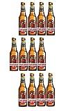 Cruzcampo Especial Sin Gluten cerveza pack 12 botellas 33cl - 3960 ml