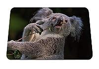 22cmx18cm マウスパッド (コアラ枝動物) パターンカスタムの マウスパッド