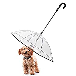 LESYPET dog Umbrella