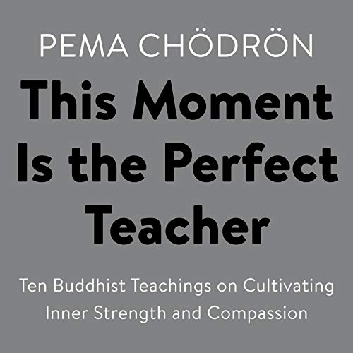 This Moment Is the Perfect Teacher audiobook cover art