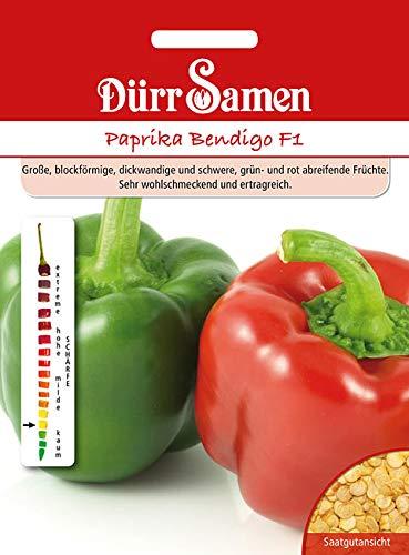Dürr-Samen - 10 x Paprika Rot & Grün