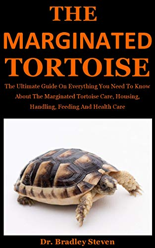 The Marginated Tortoise: The Ultimate Guide On Everything You Need To Know About The Marginated Tortoise Care, Housing, Handling, Feeding And Health Care (English Edition)