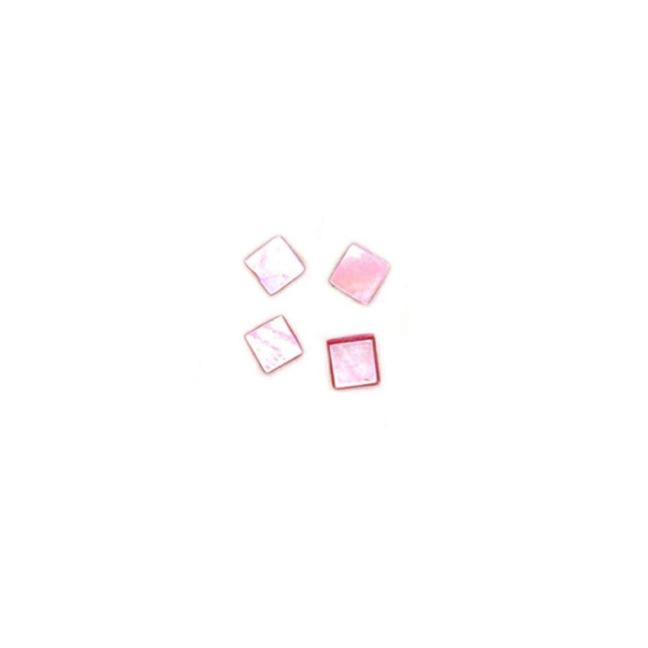 前に事前スタッフirogel イロジェル ネイルアート カラーシェルプレート シェルパーツ 【タイプA ピンク】