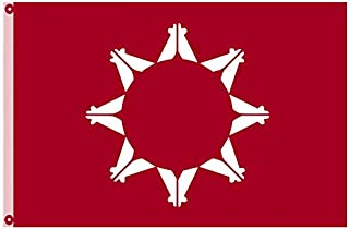 Astany Sioux Oglala Lakota Nation Flag Native American Indian Tribes Red Tribal 3X5FT Banner