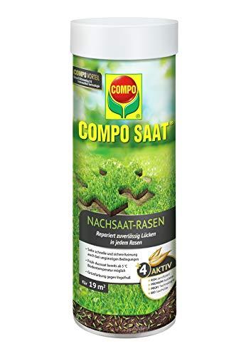 Compo 3881 rénovation de pelouse avec 2 Types de graines de 380 g