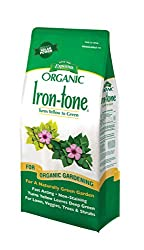 Lawn iron supplement