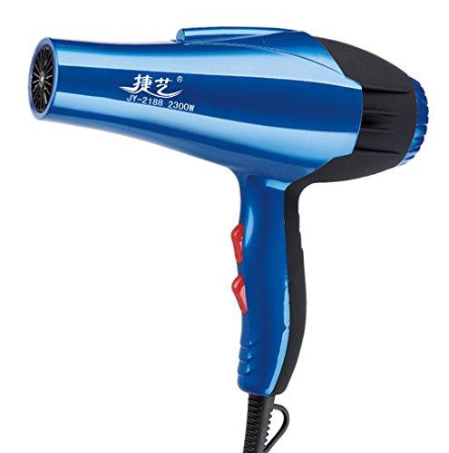 Serliy neue ziemlich mächtig Fünf Stände Professional Hair Blow Dryer 2300W Gebläse Trockner Beauty Salon (Blau)