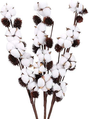 Ruiuzioong tallos de algodón seco natural, estilo granja, flores artificiales, relleno para decoración de fiestas (3 pines)