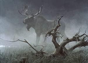 Robert Bateman Moose in Moonlight AP Canvas