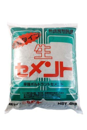 家庭化学 速乾生セメント グレー 4kg