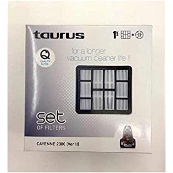 Taurus - Set Filtro 999149, Para Aspirador Megane 2200-2000 ...