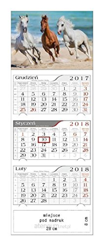 Kalendarz 2018 TrĂljdzielny Konie w Galopie [KALENDARZ]