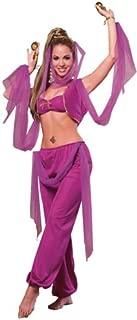 Rubie's Arabian Princess, Multicolor, Standard