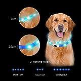 LED Hunde Halsband, LaRooTM Blinkende Leuchtendes LED Sicherheit Halsbänder - 2