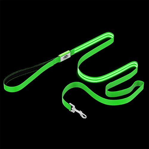 PETMAKER LED Dog Leash-Lights Up for Night Visibility and Safety-6' Leash with Padded Grip Handle, 3 Flash Modes-for Evening Walks or Runs (Green)