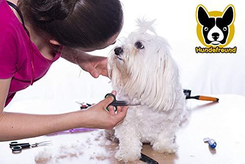 Hundescheren-Set mit Effilierschere zur Fellpflege für alle Hunde   Scheren aus Edelstahl mit abgerundeter Spitze - 6