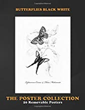 Poster Collection: Butterflies Black White This Handdrawn Illustration Of A Butterfly Is Perfect Animals