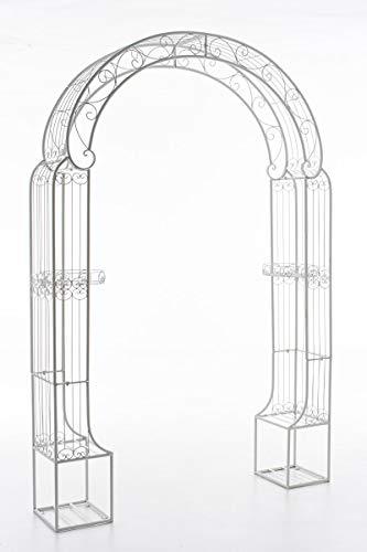 CLP Arche De Jardin en Fer Forgé Alessia I Hauteur du Passage 228 cm Largeur 123 cm I Arceau A Rosiers I Support pour Plantes Grimpantes Blanc