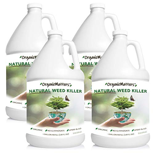 OrganicMatters Natural Weed Killer Spray, No Glyphosate, People, Pets and Eco-Friendly, Results in Less Than 24-Hours (1-Case of 4 Gallon Refills)