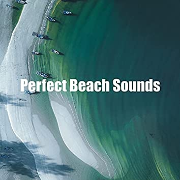 Perfect Beach Sounds