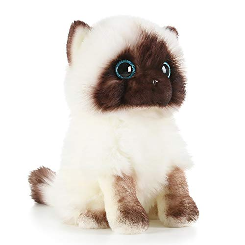 Super süße Simulation Kitty Puppe Plüschtier süße Puppe Katze Puppe (Sitzhöhe 26 cm), Kiel Spielzeug süßes Spielzeug Kätzchen (1)
