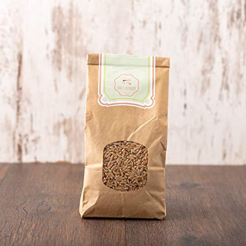 süssundclever.de® Bio Kamut   Khorasan-Weizen   2 kg (2 x 1 kg)   plastikfrei und ökologisch-nachhaltig abgepackt