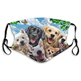 Animal Dog Set Pug Dust Washable Reusable Filter and Reusable Mouth Windproof Warm Cotton Face