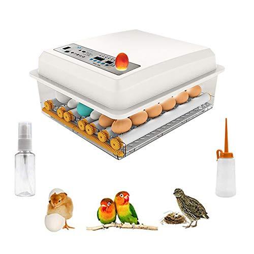 KKTECT Incubadora De Huevo Hatcher suministro De Huevo Incubadora Automática Capacidad Para 9-16 Huevos De Gallina,Digital Incubadora Aves De Corral, Pato, Codorniz, Reptil
